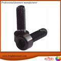 Socket Head Allen Bolts