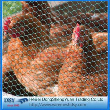 Professional Hexagonal Iron Wire Netting
