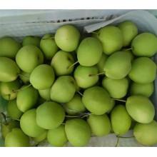 Beliebte Super Birnenfrucht mit Zertifikat