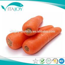 Pólizas puras naturales puras del beta-caroteno 1% CWS-M con el triglicérido de cadena medio