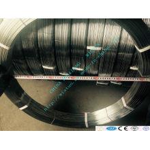 Fil inox galvanisé ovale avec prix bas de haute qualité