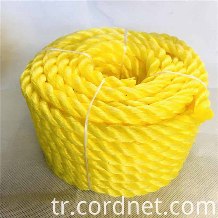 Pp Twisted Rope 5