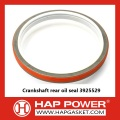Crankshaft rear oil seal 3925529