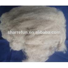 cheveux de raton laveur de haute qualité