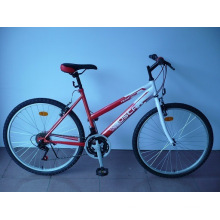 "26"" Steel Frame Mountain Bike (CZ2604)"