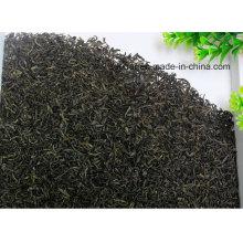 Chá verde velho