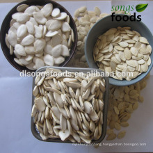 Pumpkin Seeds Factory , Dried Snow White Pumpkin Seeds On Sale