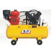Auto Maintenance Piston Air Compressor (Jvg-0.3/10)