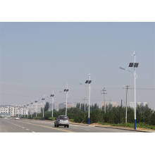 Solar Hybrid Street Light Solar Wind Power Outdoor Hibrid Solar Wind Public LED 12V Solar Wind 50W LED Street Lights