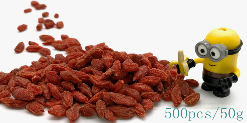 What Is A Goji Berry