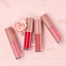 Whosale Daily Makeup Matte Moisturizing Lip Gloss Lip Glaze Lipstick 4 Travel Kit Cosmetic Waterproof Lip Gloss