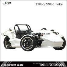 EWG 250ccm / 300ccm Zongshen Motor Trike Erwachsene Dreiräder Ztr Trike