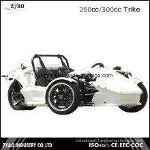 EEC 250cc/300cc Zongshen Engine Trike Adult Tricycle Ztr Trike