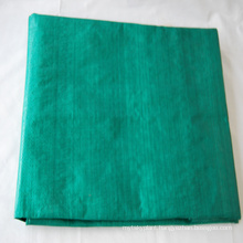 PE Laminated Protection on Scaffoldings Tarpaulin with Low Price