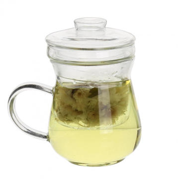 Best Price on for Tea Cup Glass Tea Infuser Loose Leaf Tea Glass Strainer Mug supply to Syrian Arab Republic Suppliers