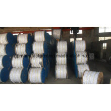 Hot DIP Gualvanized Wire Strand 1*7/1*19/7*7