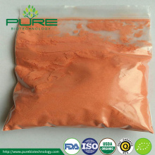 Ekologiskt Goji Berry Powder Extract