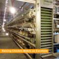 La fuente de la fábrica de China H automática teclea la jaula del pollo de la capa de la batería
