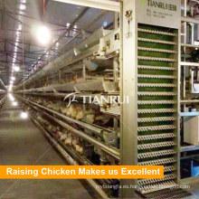 Jaulas de la batería de la capa del pollo del huevo de la ave de corral para la granja avícola grande