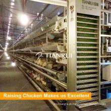 Equipamento automático das aves domésticas da exploração agrícola de galinha da gaiola da camada para a venda