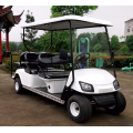New Condition Li-ion battery electric car