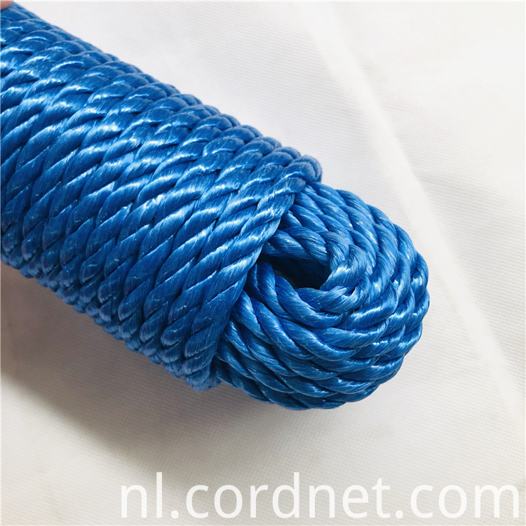 Blue Pp Split Film Rope 9