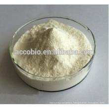 High purity DHA powder 10% , DHA microalgae powder, omega 3