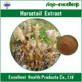 Poudre 100% naturelle d'extracteur de prêle