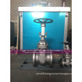Alloy 20 CN7M Gate Valve