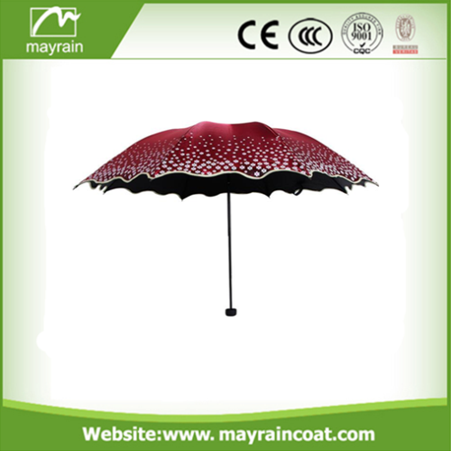 Straight Umbrella Outdoor