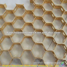 Carbon Steel 0Cr13 Tortoise Shell Net(Factory)