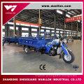 """""""Trotinette"""" grande alto da carga do triciclo do motor do poder de 150cc Quanlity"""