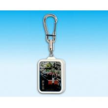 Keychain - Scenery Series-Alishan
