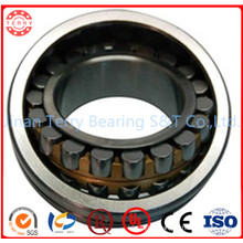 Self-Aligning Bearing Spherical Roller Bearing (22205CC/WW33)