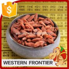 Высушенный на солнце процесс сушки Китай Ningxia goji berry