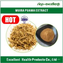 Ptychopetalum Olacoides Extract Powder for Enhance Sex