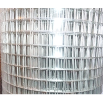 Grosir Murah Welded Wire Mesh