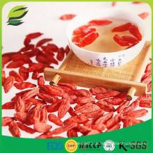 China goji Vorteile goji Beeren Samen Öl für die Gesundheit