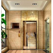 High-quality Famous Brand XIWEI Best-seller Villa Elevator, Home Elevator