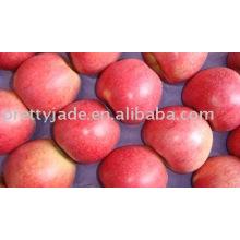 Frischer Qinguan Apfel