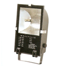 Floodlight Fixture (DS-309A)