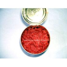 100% pasta de tomate puro (HACCP, ISO, BRC)