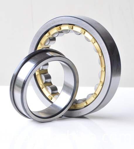 Single Row Cylindrial Roller Bearing NF200