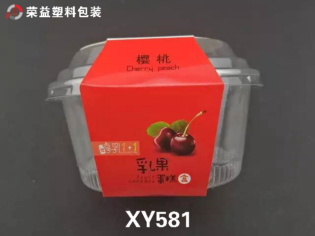 Hot Sale Custom Plastic Cheese Box