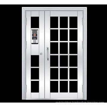 Beautiful Design Doors (FX-3016)