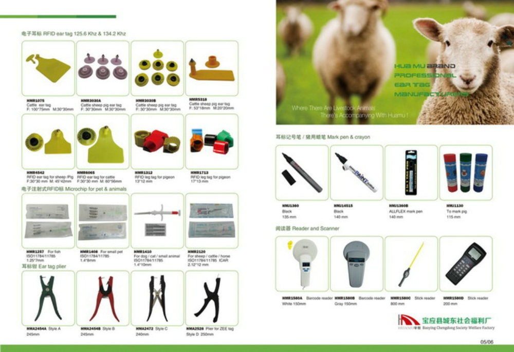 green eartag sheep Siamesed ear tag