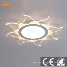 Plafonniers encastrés de la vente chaude 30W LED de style européen