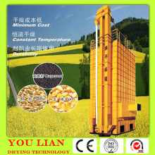 Secador de frijoles de biomasa
