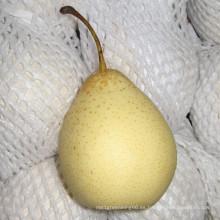 2016 cultivo chino Fresh Ya Pear