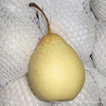 Chinese Fresh Ya Pear 2016 New Crop